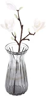 Wie Lange BlüHen KirschblüTen