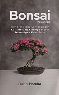 Bonsai Zucht