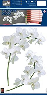 Orchideen Tattoo Bilder