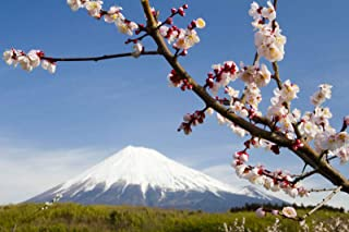 Gebirge Japan