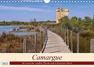 Camargue Reis
