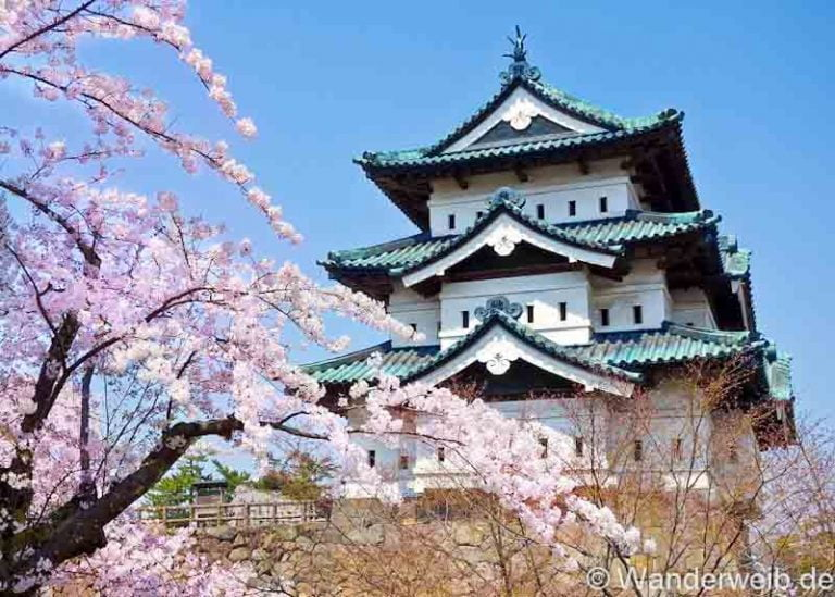 Japan KirschblüTenzeit